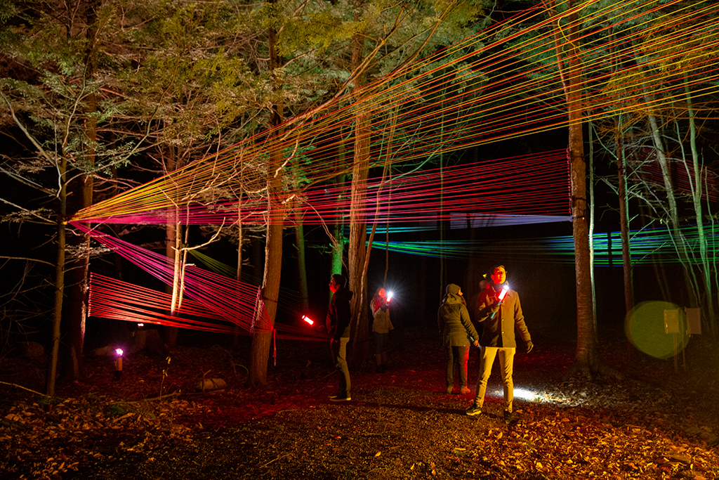 People in the middle of a forest trail at night are looking at a colorful stringing installation which is attached on the high part of trees
